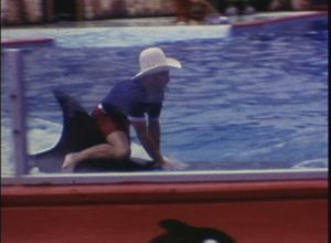 Seven Seas Marine Life Park (1973)