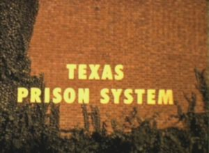 Texas Prison System (1955)