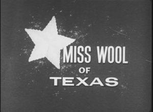 Miss Wool of Texas (1956)