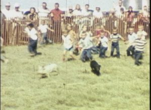 Birthday Parties and Pig Chase (1960)