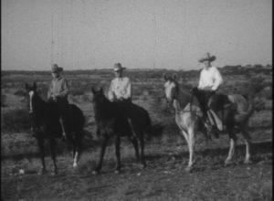 Ride 'Em Cowboy! (1929)